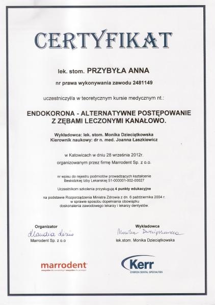 Anna Przybyla, endodoncja